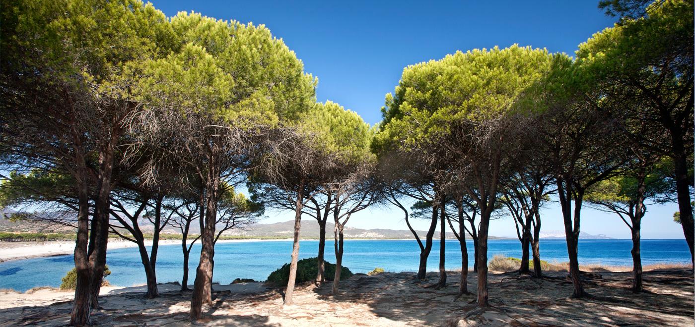 Foto gallery immagini del porto ottiolu resort budoni for Sardegna budoni spiagge